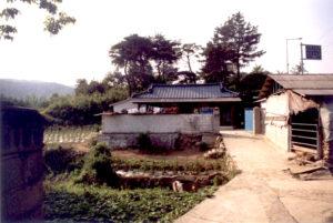 Korea/farmyard/CarolDussere